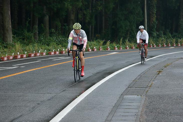 試乗コースはアップダウンに富むジャパンカップのレースコース