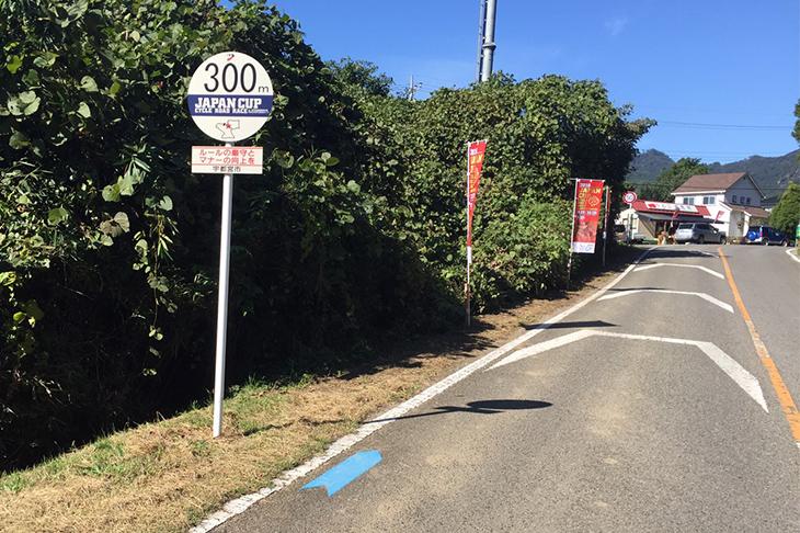 ジャパンカップコース路面標示