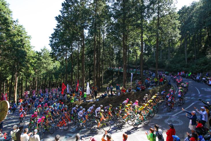 観客が詰めかけた古賀志林道を走る